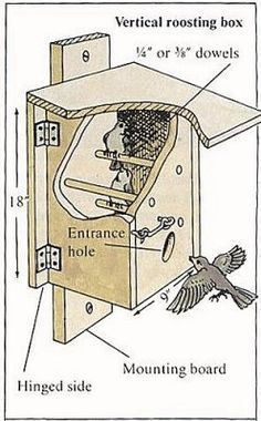 Nighttime Shelter for Winter Birds - Bird Roost Plan Two - Birdhouses and feeders - Bird Supplies Homemade Bird Houses, Bird Houses Diy, Bird House Feeder, Diy Bird Feeder, Bird Feeder Plans, Bird House Plans, Bird Aviary, Birds And The Bees, Bird Boxes