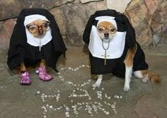 Sister Mary Dogs