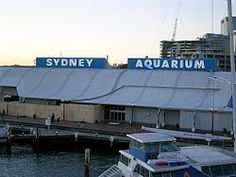 Sea Life Sydney Aquarium - Wikipedia, the free encyclopedia