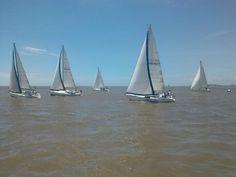Regata IMB 4 pies. Rio de la Plata