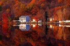 New Jersey fall.