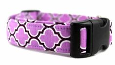 Bow Wow Couture Dog Collar Barcelona in Lilac available at www.ZoePetSupply.com
