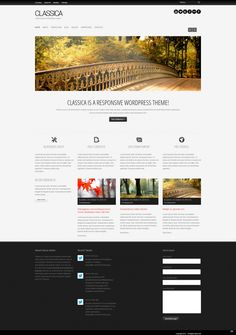 Classica: clean responsive wordpress theme free download- for Nash St?