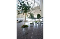 Universal Planters shown in custom configuration with bodies in Stainless Steel with custom finish at the Indianapolis International Airport, Indianapolis, Indiana