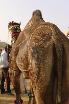 Camel Art.  Oh, man, they must be good with a razor.