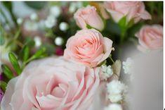 Pink roses by Lillies of Wanstead Funeral Flowers, Wedding Flowers, Got Married, Getting Married, Party Venues, Flowers Online, Christening, Pink Roses, Weddings
