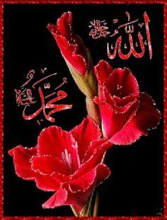 Islamic Images, Islamic Pictures, Islamic Art, Islamic Messages, Good Morning Beautiful Gif, Good Morning Arabic, Morning Dua, Quran Wallpaper, Islamic Quotes Wallpaper
