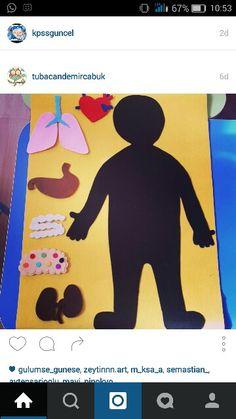 İç organlarımız Human Body Activities, Preschool Activities, Paper Dolls Printable, Prep School, Lessons For Kids, Science For Kids, Lesson Plans, Kindergarten, Homeschool