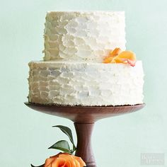 This delicious and simple version of classic carrot cake gets a modern makeover with aromatic cardamom and tangy mascarpone cheese whipped frosting. Recipe: http://www.bhg.com/recipes/from-better-homes-and-gardens/march-2015-recipes/?socsrc=bhgpin031315carrotcakewithmascarponefrosting&page=7