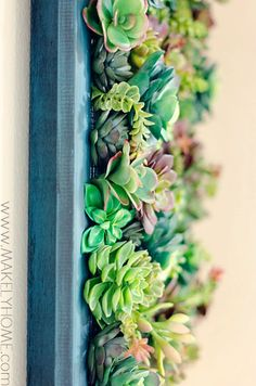 Faux Succulent Hanging Garden | Makely School for Girls