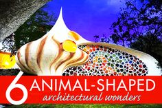 Biomimicry in buildings: 6 animal-shaped architectural wonders | Inhabitat - Sustainable Design Innovation, Eco Architecture, Green Building