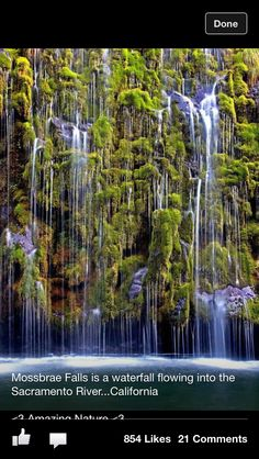 Mossbrae falls waterfall flowing into Sacramento River, California
