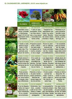 Calendario del jardinero Julio