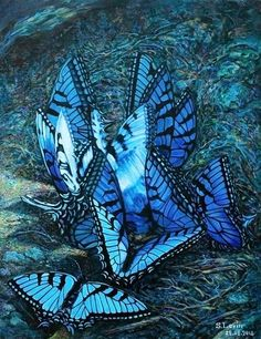 88 best Painting images on Pinterest   Contemporary Art, Abstract