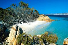 | Isola di La Maddalena | #Sardegna |   www.volamondo.it