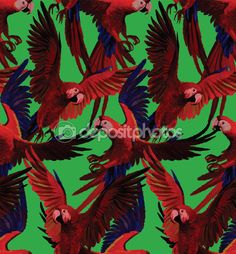 Patrón sin fisuras con guacamayos rojos volando. Vector dibujado mano — Vector de stock #56463261