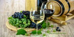 KER-VIN   Ekološko Vinogradarstvo, Ekološko Vinarstvo   BENKOVAC - ZADAR  Obrt KER – VIN djeluje od 1990. godine u mjestu Nadin na području Zadarske županije te se bavi ekološkim vinogradarstvom i ekološkim vinarstvom. Proizvodnja u vinogradima se bazira na ekološkim načelima čime Nadin postaje ekološka metropola, ne samo u zadarskoj regiji nego i u Hrvatskoj. Za obitelj Glavić se može reći da su pioniri ekološke proizvodnje u vinogradarstvu i vinarstvu. Posjeduju više od 100 hektara…