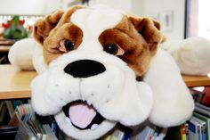 Bark George, how to make a stuffed dog into George puppet