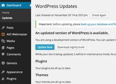 WordPress Update Update Now Button photo