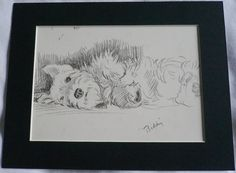 Vintage Mounted 1937 Mac Lucy Dawson Biddy relaxing sealyham terrier dog plate print   gift. £7.15, via Etsy.