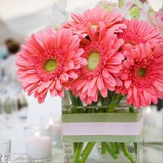 Favorite flower ever. This will be at my wedding