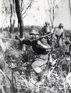 German soldiers on patrol in a forest at the mouth of the Dnieper River, covered by an MG 34 machine-gun (foreground).