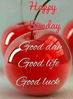 Sunday Morning Wishes, Morning Wishes Quotes, Good Morning Happy Sunday, Morning Blessings, Good Morning Messages, Good Morning Greetings, Good Morning Quotes, Good Morning Flowers Gif, Good Morning Picture