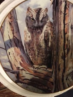 FRANKLIN MINT THE MAJESTY OF OWLS  SET OF 3 PLATES MINT IN ORIGINAL PACKAGES  #FRANKLINMINT