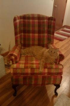 This is the first chair I recovered.  My cat loves it.