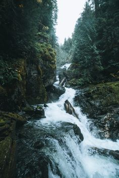 Hidden Creek by: Andrew Golesch