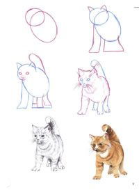 How to draw step by step tutorial pattern