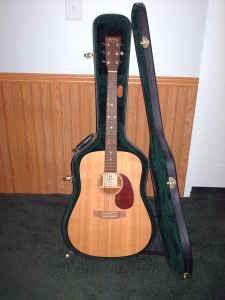 my guitar! it's a martin dm mahogany dreadnought. i love it.