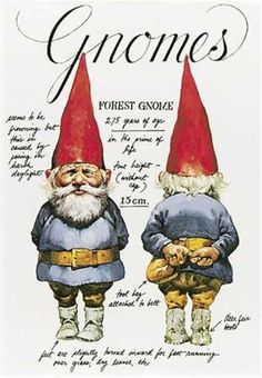 Gnomes by Will Huygen, Summer Reading 2013, Dig Into Reading, ~ This was one of my favorite books as a child!