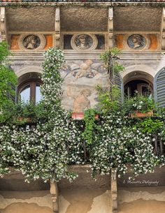 Piazza delle Erbe, Verona, Italie