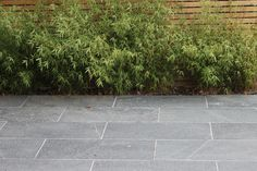 Sawn Black Basalt has a consistent charcoal/black colour and a luxurious flamed surface texture making it both fashionable and functional. Bluestone Pavers, Paving Slabs, Paving Stones, Driveway Paving, Garden Paving, Garden Stones, Outdoor Paving, Outdoor Stone, Outdoor Gardens