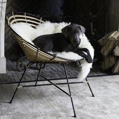 Fancy - Rattan Round Lounge Chair