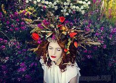 Целебные травы для волос