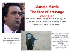 This filthy coward killed the bull stabbing the poor animal while remaining hidden behind a wooden barriers present in the arena (Yes, because the bullfighters and their henchmen also have the ability to repair themself!). This man is scum! A vulgar murderer! I'd like to spit in your face coward!