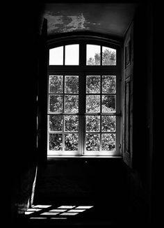 Window view Julisteet ryhmässä Julisteet  / Koot / 50x70 cm @ Desenio AB (2547)
