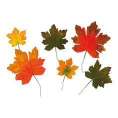 Σετ 6τχ Φθινοπωρινά φύλλα Σφένδαμου Κόκκινο - Πορτοκαλί - Πράσινο 26cm, 21cm, 36cm | eshop-dcse Autumn Park, Plants, Products, Catalog, Group, Plant, Gadget, Planets
