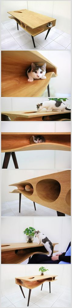 CATable was created by Ruan Hao from LYCS, an architecture firm based in Hangzhou and Hong Kong. Especially designed for cats to explore and sleep in, the project follows a worldwide trend: that of sharing your home with pets. The table features crannies and passageways, where your furry cat friend can happily roam stealthily. http://lycs-arc.com