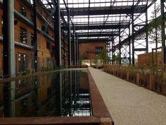 Ouverture des jardins Rosa Luxemburg, de la halle pajol !!! Halle, Extensions, Space, Architecture, Gardens, Openness, Floor Space, Arquitetura, Hall