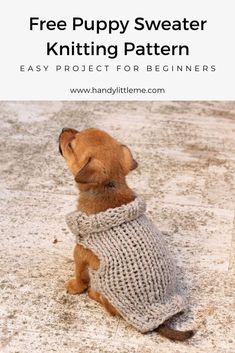 Free knitting pattern for a puppy sweater by Handy Little Me. If you are a beginner knitter this pattern is perfect for you to practice the knitting basics. Knitted Dog Sweater Pattern, Dog Coat Pattern, Knit Dog Sweater, Small Dog Coats, Small Dog Sweaters, Cat Sweaters, Knitting Patterns Free Dog, Knitting Basics, Free Knitting