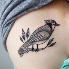 Close-up of Stephanie's bluejay.  #tattoos #tattoo #tattoosofinstagram #birdtattoo #matchingtattoos #blackwork #blxckink #bluejays #bluejaytattoo #girlytattoo #animaltattoo #torontotattoo #torontotattooartist #tattoopeople #tattoopeopletoronto
