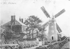 Delve Mill, Chatteris, Cambridgeshire - c. 1911 where my gt gt gt uncle, Fred Cawthorn used to work. My Ancestry, Old Photographs, St Ives, Peterborough, Windmills, Vintage Photos, Past, House, Painting