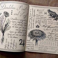 It's so annoying to see people try to pass this book off as their own here on tumblr! If you look closely you will see that the photos are watermarked 'Poison Apple Printshop.' This book is entitled 'The Hedge Witch's Herbal Grimoire' and it is a...
