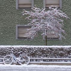 munich | germany | münchen | deutschland | untergiesing | straßenszenerie im winter