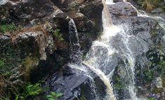 Waterfalls - Simpsons Falls