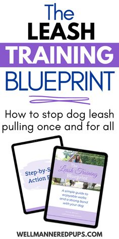 The Leash Training Blueprint - A simple guide to leash training your dog, strengthening the bond between you and your pup, and more enjoyable walks for the both of you!