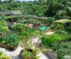 Permaculture is a healthy & energy-efficient system. #Permaculture #sustainablefarming #environment #GOGREEN www.mesasostenible.com/